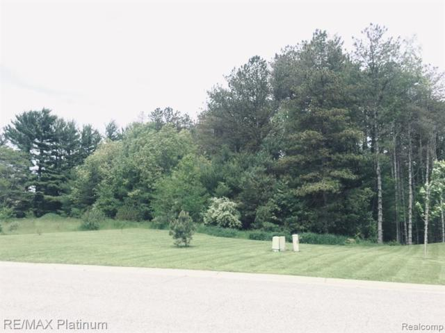 8529 Sunrise Mist Drive, Hamburg Twp, MI 48169 (#219055975) :: The Mulvihill Group