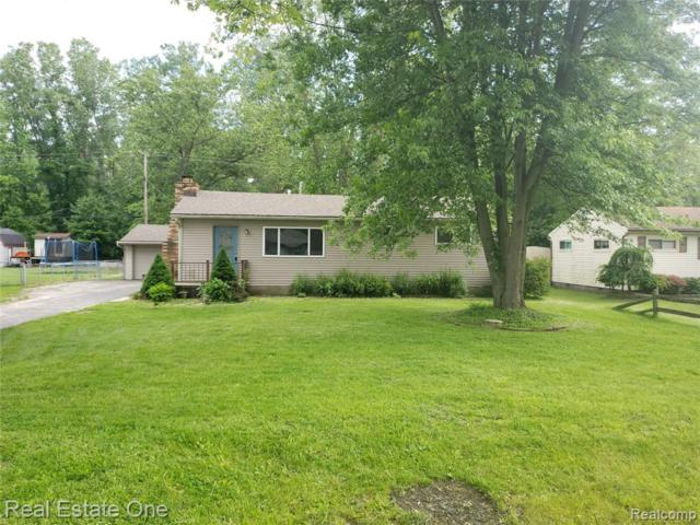 48653 Willis Road, Sumpter Twp, MI 48111 (#219056061) :: The Buckley Jolley Real Estate Team
