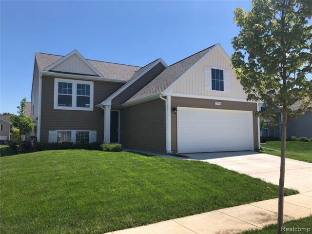 2780 W Fork River Drive, Handy Twp, MI 48836 (#219056068) :: The Mulvihill Group