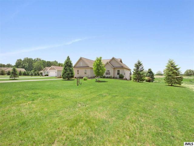2196 Southway Dr, Grass Lake, MI 49240 (#55201902017) :: GK Real Estate Team