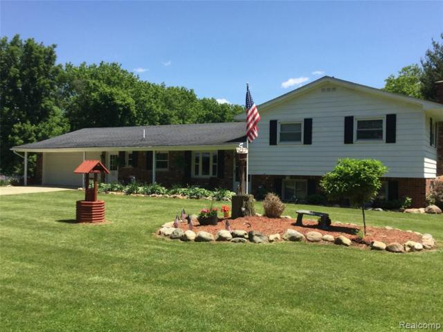 2325 S Fairgrounds Road, Imlay Twp, MI 48444 (#219056636) :: The Alex Nugent Team | Real Estate One