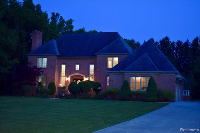 405 Hunters Crest Drive, Pittsfield Twp, MI 48176 (#219056677) :: The Buckley Jolley Real Estate Team