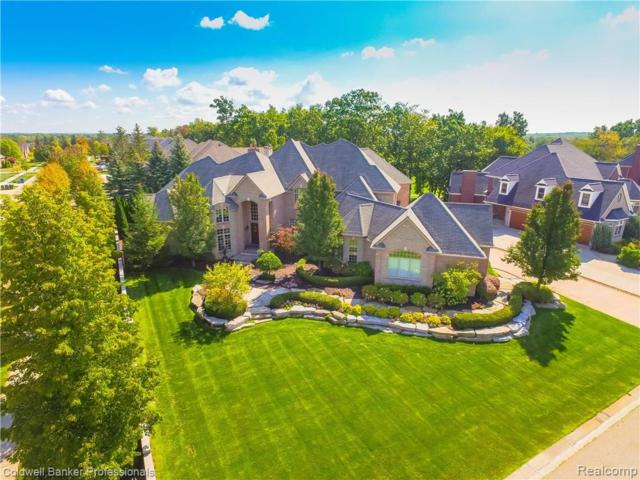 7436 Foxburg Court, Independence Twp, MI 48348 (#219056778) :: Alan Brown Group