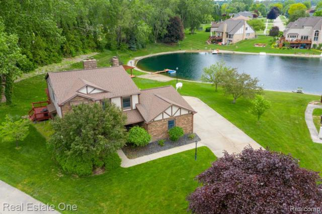 11625 Watkins, Shelby Twp, MI 48315 (#219056855) :: The Alex Nugent Team | Real Estate One