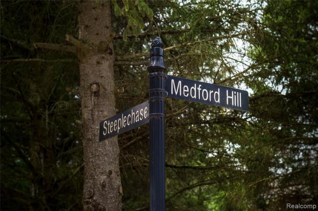 Lot 9 Medford Hill Drive, Metamora Twp, MI 48455 (#219057036) :: The Buckley Jolley Real Estate Team