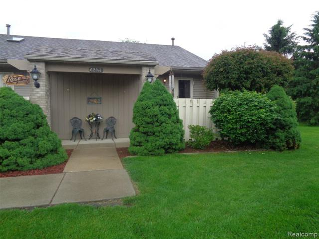 62511 Raleigh Court #6, South Lyon, MI 48178 (#219057200) :: The Buckley Jolley Real Estate Team