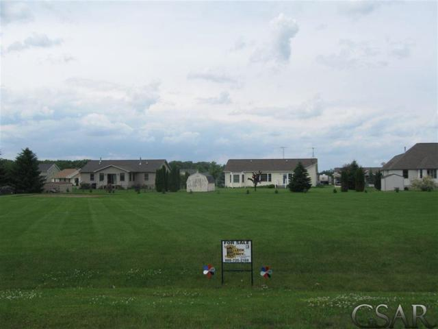 1837 Fawn Circle, Caledonia Twp, MI 48867 (#60031383702) :: The Mulvihill Group