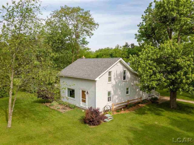 6600 Pocklington Rd, Raisin Twp, MI 49229 (#56031383804) :: Team Sanford