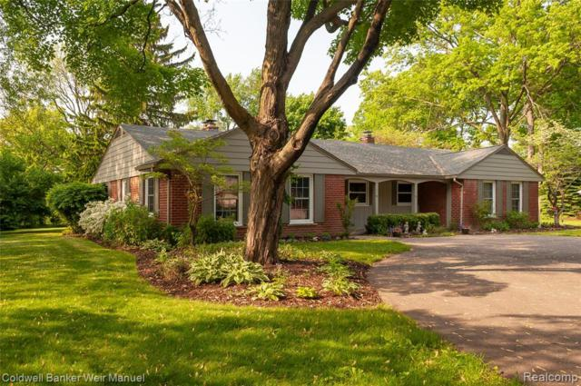 815 Pine Hill Drive, Bloomfield Twp, MI 48304 (#219057827) :: The Buckley Jolley Real Estate Team