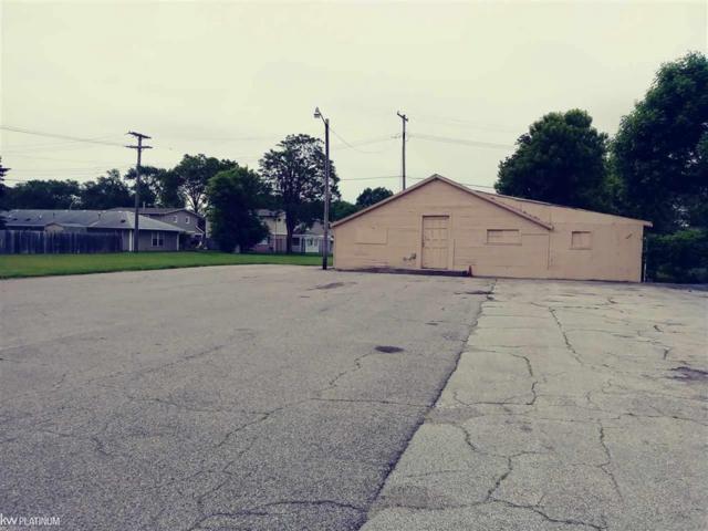 1608 Garfield Street, Port Huron, MI 48060 (#58031383823) :: The Mulvihill Group