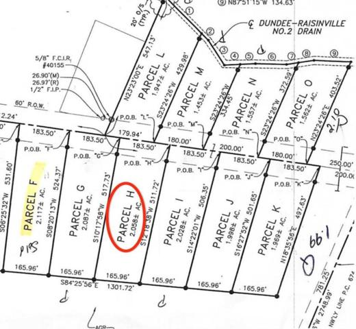 11135 S Custer, Raisinville Twp, MI 48161 (#57031383862) :: The Alex Nugent Team | Real Estate One