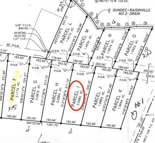 11075 S Custer, Raisinville Twp, MI 48161 (#57031383863) :: The Alex Nugent Team | Real Estate One