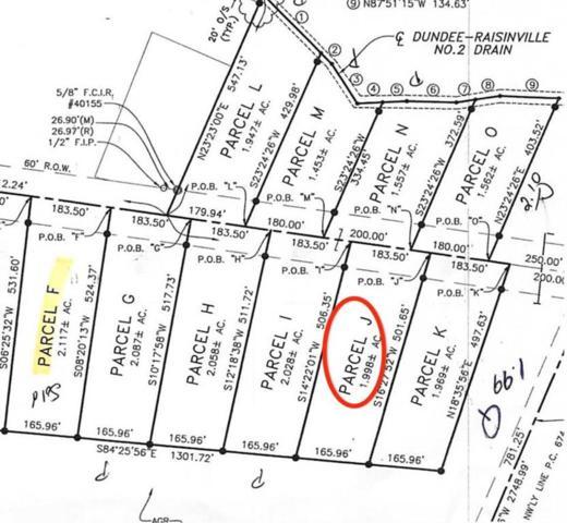 11015 S Custer, Raisinville Twp, MI 48161 (#57031383864) :: The Alex Nugent Team | Real Estate One