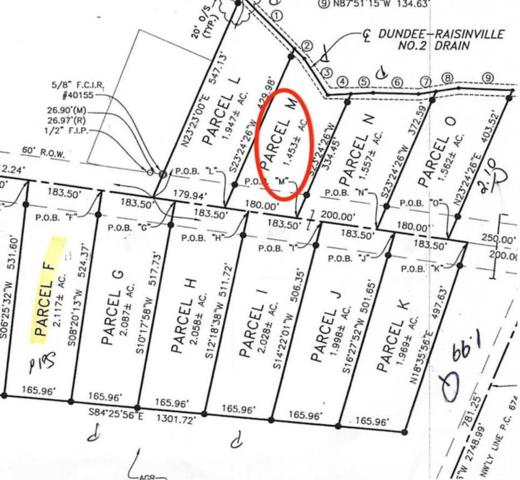 11080 S Custer, Raisinville Twp, MI 48161 (#57031383866) :: The Alex Nugent Team | Real Estate One