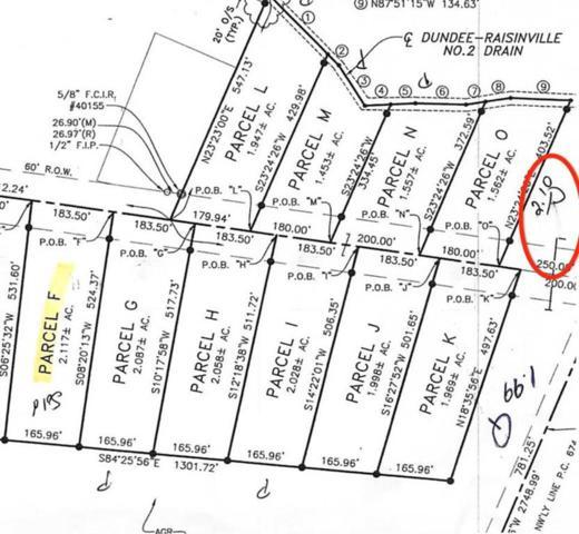 Sullivan, Raisinville Twp, MI 48161 (#57031383871) :: The Alex Nugent Team | Real Estate One