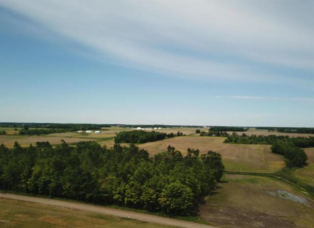 0 S Waldron Rd, Wright Twp, MI 49288 (#53019027355) :: The Alex Nugent Team | Real Estate One