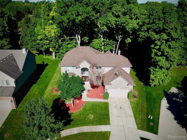 770 Grovecrest, Rochester Hills, MI 48307 (#219058350) :: Alan Brown Group