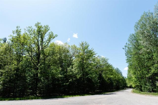 0 Wilderness Drive, Moffatt, MI 48610 (#543266394) :: The Buckley Jolley Real Estate Team