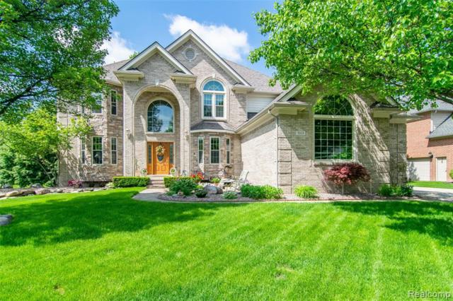 7053 Brookview Drive, Shelby Twp, MI 48316 (#219058748) :: The Alex Nugent Team | Real Estate One