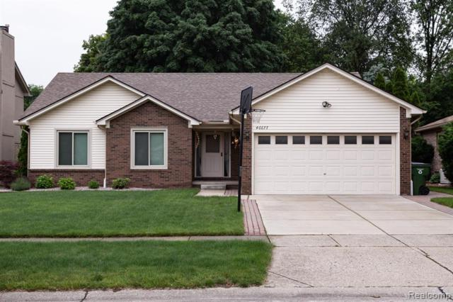 46677 Springhill Drive, Shelby Twp, MI 48317 (#219058934) :: RE/MAX Nexus
