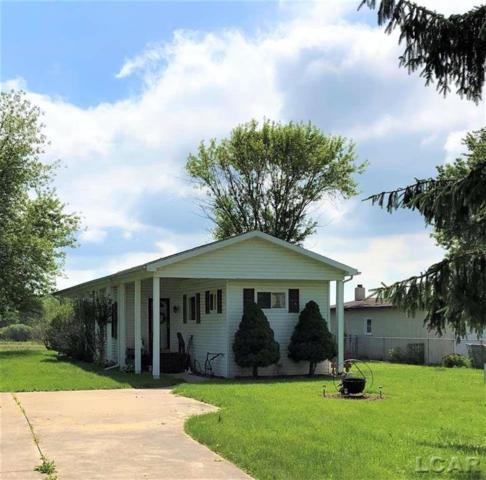 5031 Townley, Rollin Twp, MI 49253 (#56031384173) :: The Alex Nugent Team | Real Estate One