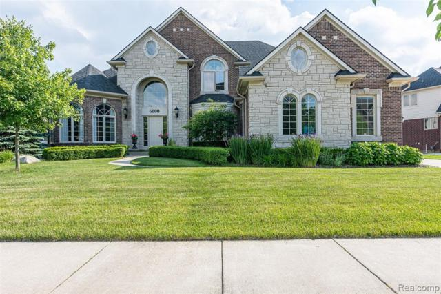 6000 Shadydale Drive, Shelby Twp, MI 48316 (#219059019) :: Team Sanford
