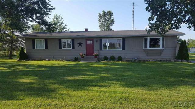 7190 Dudley Rd, Rome Twp, MI 49221 (#56031384195) :: The Alex Nugent Team   Real Estate One
