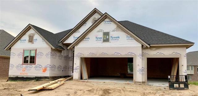 62673 Sawgrass, Washington Twp, MI 48094 (#58031384210) :: The Alex Nugent Team   Real Estate One