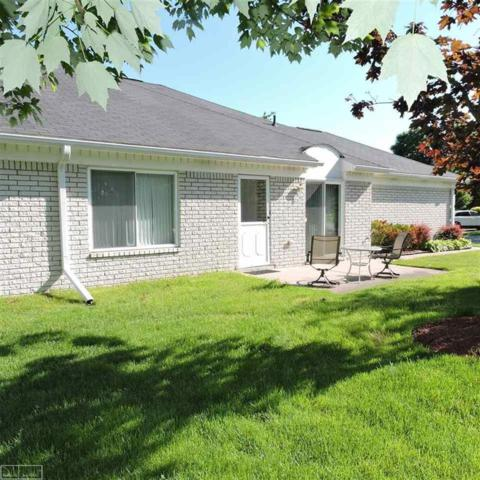 20464 Birch Meadow, Clinton Twp, MI 48036 (#58031384217) :: The Alex Nugent Team | Real Estate One