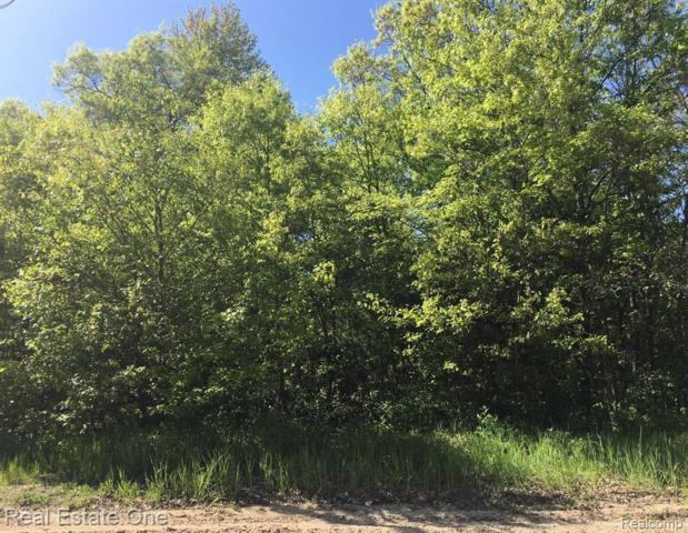 000 Choctaw Trail, Churchill Twp, MI 48661 (#219059247) :: RE/MAX Classic