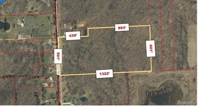 0 Church Lot 3 Road, Ira Twp, MI 48023 (#219060782) :: The Buckley Jolley Real Estate Team