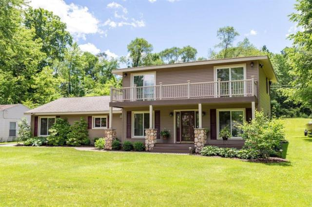14049 Edgewater Dr, Dexter Twp, MI 48137 (MLS #543266476) :: The Toth Team