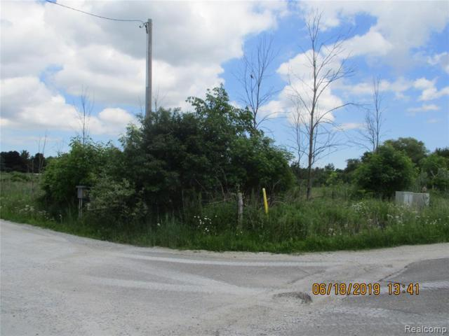 3100 Mclain Road, Clyde Twp, MI 48049 (#219061568) :: Team Sanford