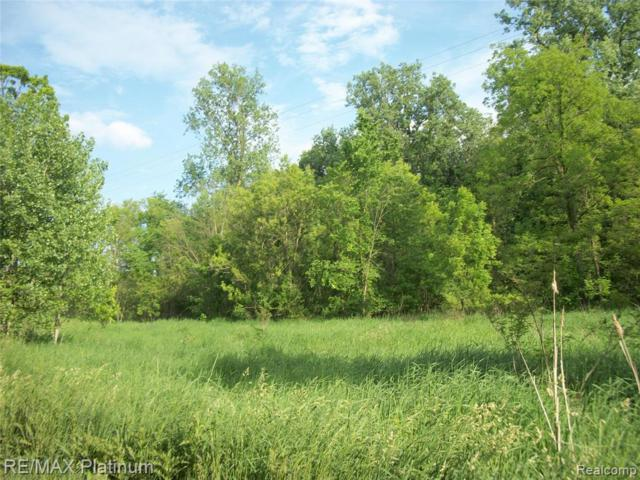 VACANT Roberts Road, Iosco Twp, MI 48137 (#219061600) :: The Alex Nugent Team | Real Estate One