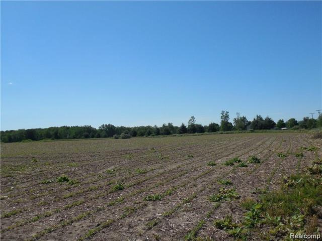 Vacant Land - B Fowlerville Road, Conway Twp, MI 48836 (#219061646) :: Team Sanford