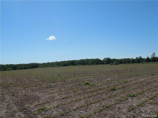 Fowlerville Rd D Fowlerville Road, Conway Twp, MI 48836 (#219061655) :: Team Sanford