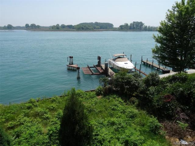 2 Boat Well East River Wells E, Grosse Ile Twp, MI 48138 (#219061708) :: The Buckley Jolley Real Estate Team