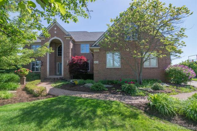 3835 White Tail Drive, Rochester, MI 48306 (#219062731) :: KNE Realty 360
