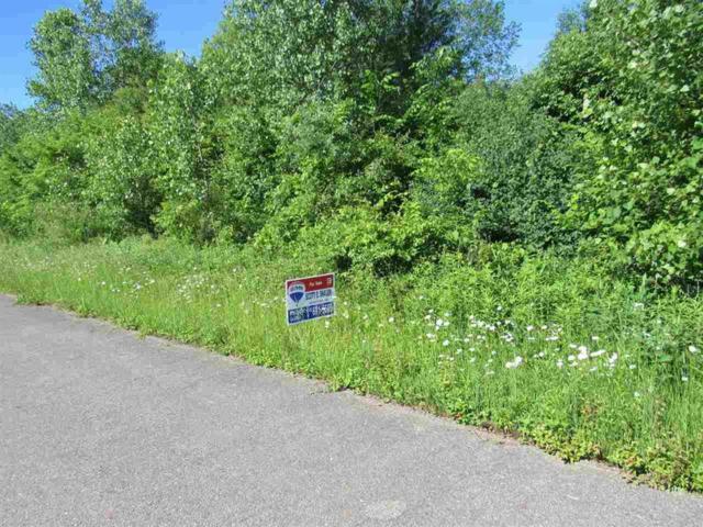 0 E Coldwater, Swartz Creek, MI 48506 (#5031385407) :: The Buckley Jolley Real Estate Team