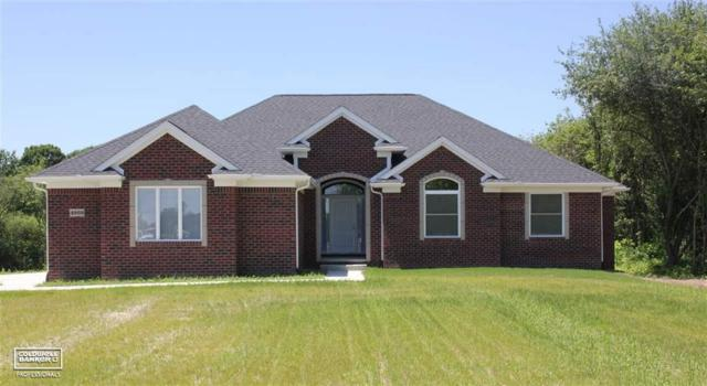 4888 Glover Rd, Almont Twp, MI 48003 (MLS #58031385513) :: The John Wentworth Group