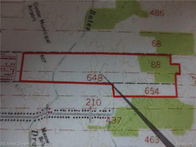 420 Payson Avenue, Monroe, MI 48162 (MLS #219063594) :: The Toth Team