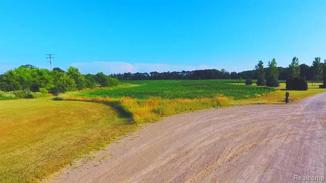 000 Daisey Lane, Conway Twp, MI 48872 (#219064201) :: The Alex Nugent Team | Real Estate One