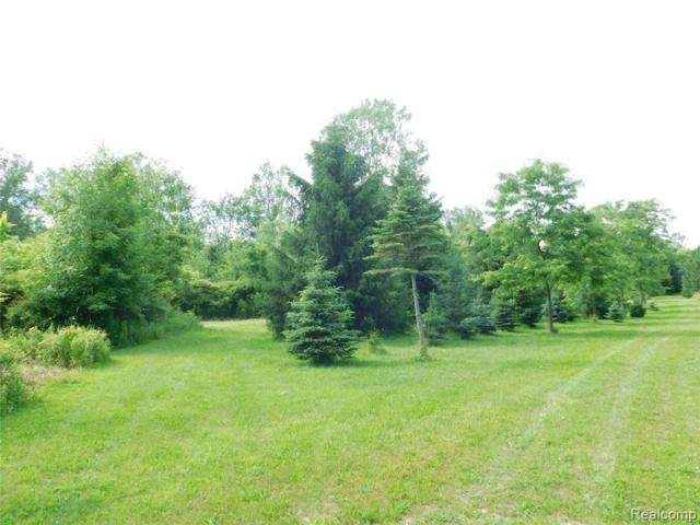 V/L Mohrle Road, Conway Twp, MI 48892 (#219064736) :: The Alex Nugent Team | Real Estate One