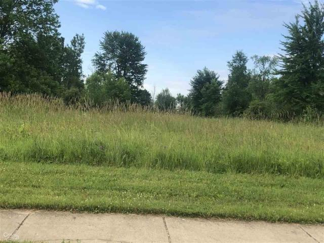 0 Orchard Lot 4, Capac, MI 48014 (MLS #58031386105) :: The Toth Team