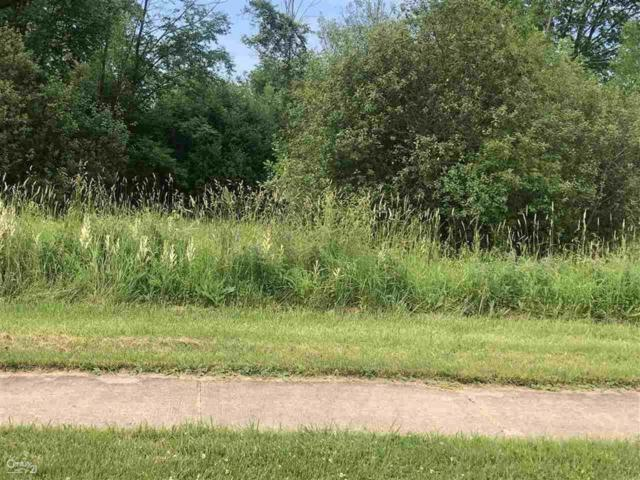 0 Orchard Lot 5, Capac, MI 48014 (MLS #58031386106) :: The Toth Team