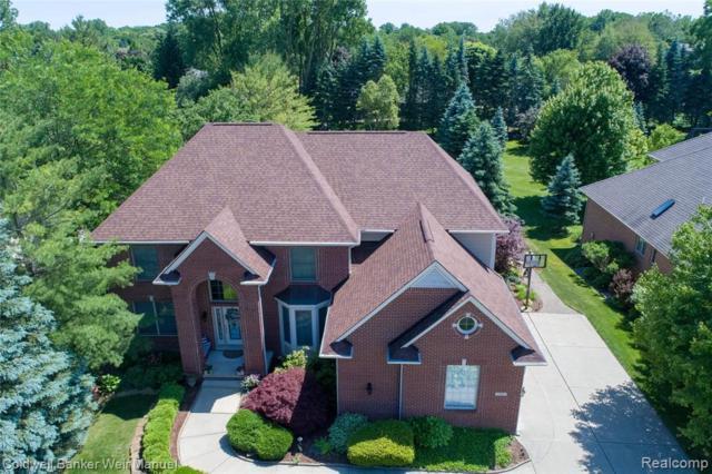 1765 Elm Drive, Troy, MI 48098 (#219065953) :: GK Real Estate Team