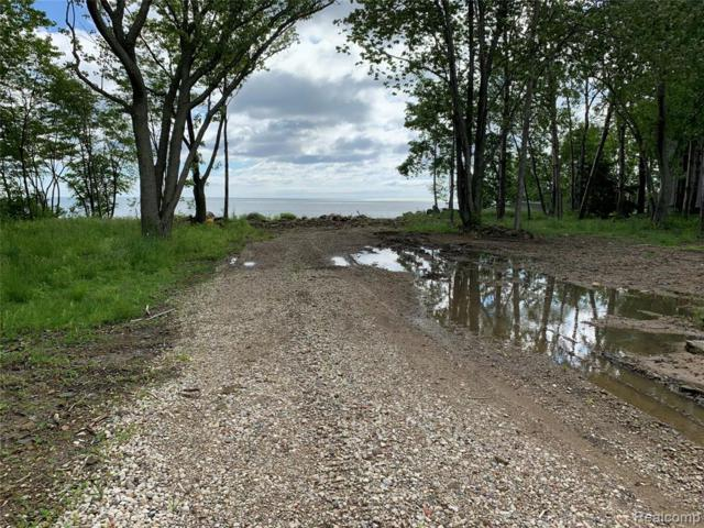0 Lighthouse Road, Huron Twp, MI 48468 (MLS #219066707) :: The Toth Team