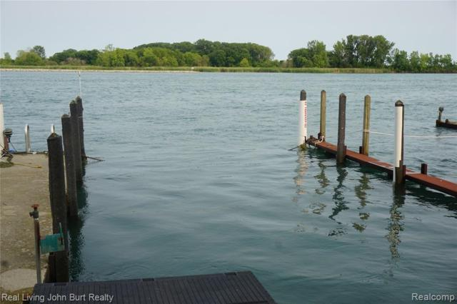 6 Boat Well East River Wells E, Grosse Ile Twp, MI 48138 (#219066914) :: The Buckley Jolley Real Estate Team