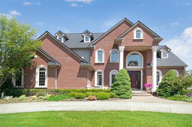 4540 Old Oak Court, Superior Twp, MI 48170 (#543266788) :: The Buckley Jolley Real Estate Team