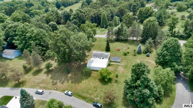 Cottage, Hanover, MI 49246 (MLS #55201902405) :: The Toth Team